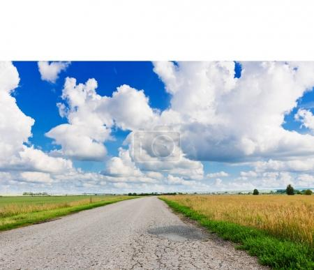 asphalt road through green field