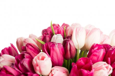 close up of bouquet of pink tulips