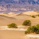 Death Valley National Park - Mesquite dunes. Calif...