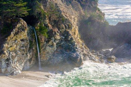 USA Pacific coast landscape