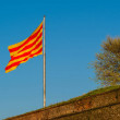 Catalonia flag waving on the wind against sky...