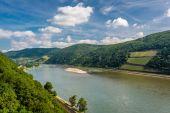 Landscape of Vineyards at Rhine Valley