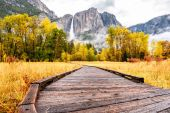 Meadow with boardwalk in park at autumn
