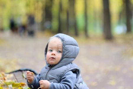 One year old baby boy in autumn park