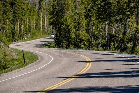 Highway in Yellowstone National Park, Wyoming, USA