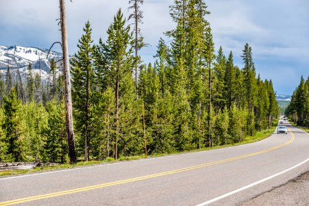 Photo for Highway in Yellowstone National Park, Wyoming, USA - Royalty Free Image
