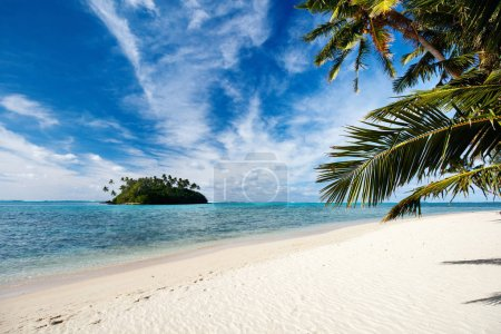 Photo for Beautiful tropical beach with palm trees, white sand, turquoise ocean water and blue sky at Cook Islands, South Pacific - Royalty Free Image