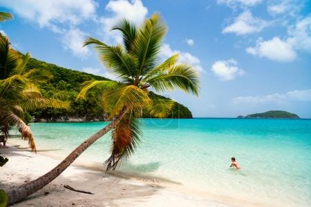 Beautiful tropical beach with palm trees, white sa...