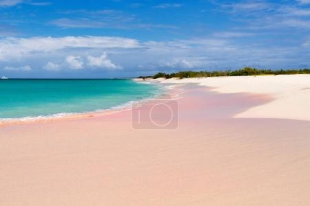 Tropical beach on Barbuda island