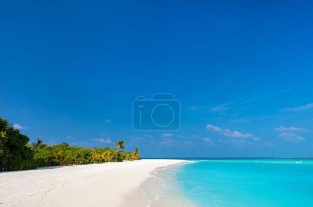 Photo pour Belle plage tropicale sur une île exotique aux Maldives - image libre de droit