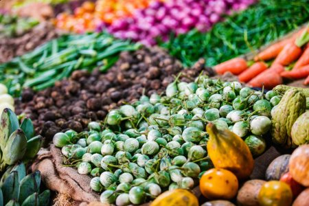 Photo for Fresh organic vegetables in outdoor market - Royalty Free Image