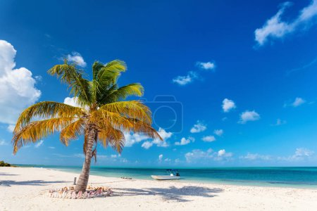 Idyllic tropical beach on Barbuda