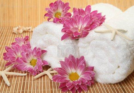 Photo pour White cotton towel and pink flowers - image libre de droit