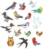 Vector set of birds in cartoon style