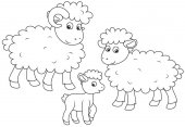 A small lamb a sheep and a ram a black and white vector illustration in funny cartoon style for a coloring book