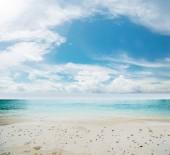 Idyllic beach and sea