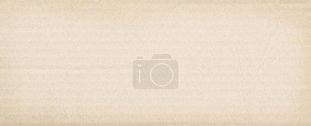 Blank cardboard texture