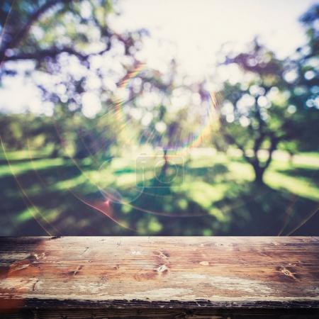 Park outdoor blur background