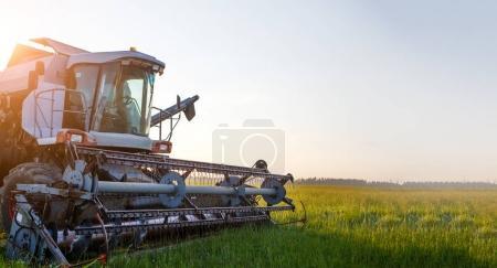 Photo of combine harvester working in field