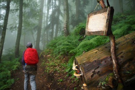 Image of empty wooden sign and girl