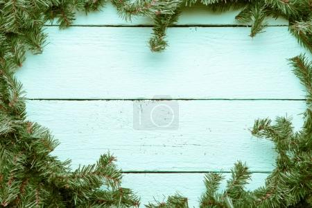 Christmas and new year blue wooden background with fir tree