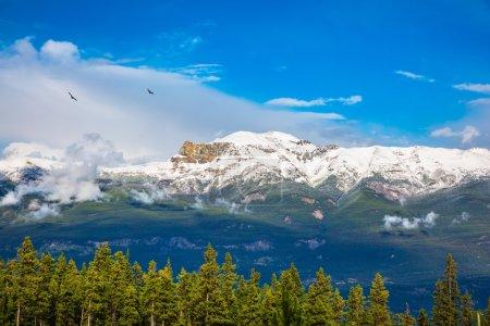 Beautiful Canadian Rockies