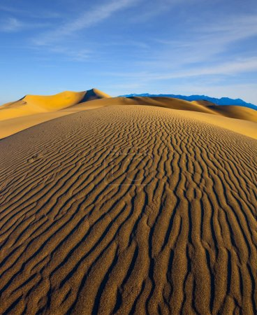 magnificent sandy waves on dunes