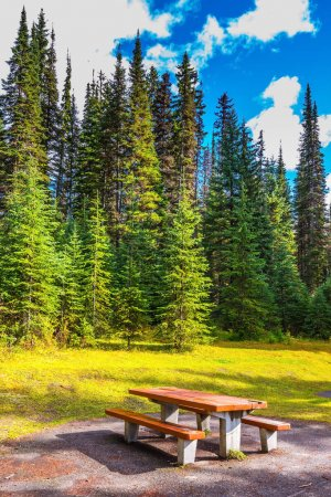 Table and benches for picnic near autumn forest