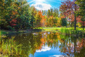 Golden autumn in French Canada