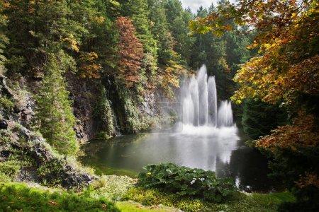 Dancing fountain in quiet pond