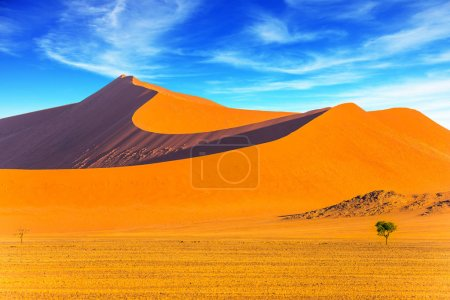 Orange, violet and yellow dunes of the Namib Desert. Small lonely tree in the huge desert. Concept of extreme and exotic tourism. Namibia, South Africa