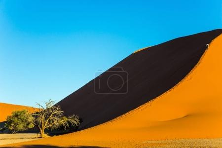The concept of extreme and exotic tourism. Tourists climb to the top of the dune. The most ancient in the world Namib Desert at sunset. Namibia, South Africa