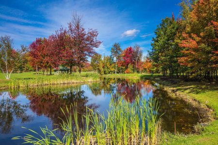 Adorable oval pond in the beautiful park. Shining day in French Canada. Concept of recreational tourism. Autumn foliage reflected in clear water of the pond