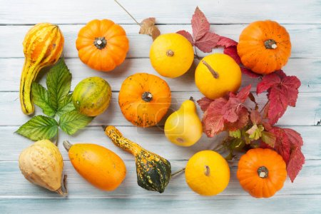 Autumn pumpkins on white wooden table, Top view...