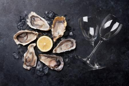 Photo for Opened oysters, ice, lemon and white wine glasses on stone table - Royalty Free Image