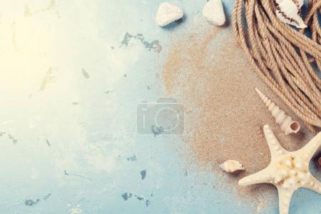 Seashells and starfish on blue background