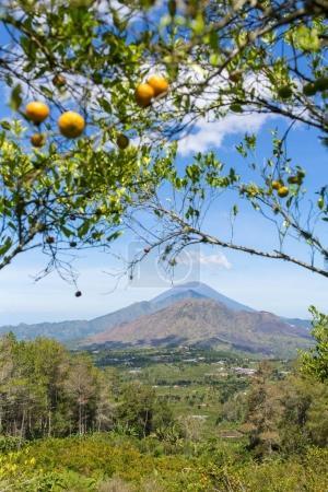 Sunny day view of the caldera of Batur volcano in Bali, Indonesia.