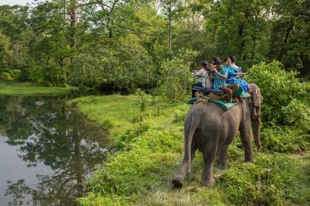 Jaldapara, India - May 5, 2017: Jaldapara elephant safari in Jaldapara National Park.