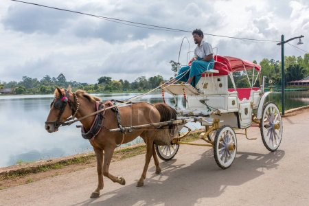 Pyin oo lwin, Myanmar - October 3, 2016:The old style horse cart with a rider in Pyin oo lwin, Myanmar.