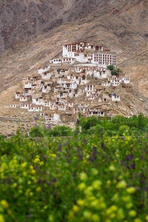 Chemre gompa Buddhist monastery in Ladakh, Jammu & Kashmir, India