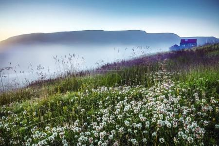 Scenic Icelandic morning landscape with mystical haze.
