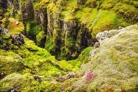 Photo for Beautiful scenic landscape of Icelandic nature. - Royalty Free Image