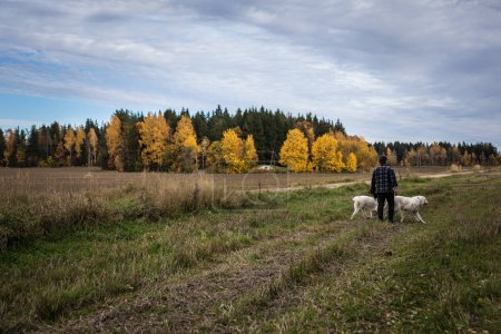 Two big white dogs are walking outdoor with owner. Tatra Shepherd Dog.