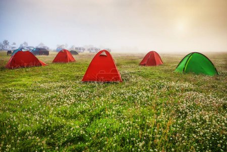 Travel tents on the morning field.