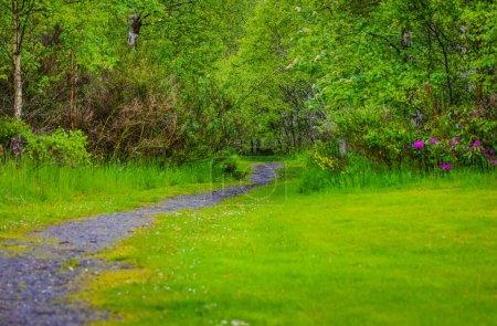 Photo pour Paysage pittoresque d'une Écosse époustouflante nature et sentier de montagne. - image libre de droit
