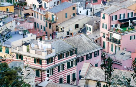 Typical homes of Monterosso, aerial view - Cinque Terre