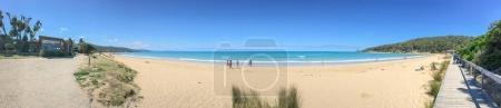 Lorne Queenscliff coastal reserve, Victoria - Australia