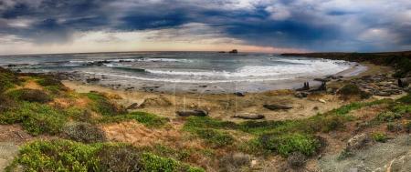 Panoramic view of Elephant Seal Vista Point, California State Park. San Simeon, CA.