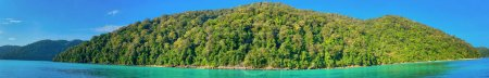 Photo for Mu Ko Surin National Park, Thailand. Island vegetation on a sunny morning. Panoramic view. - Royalty Free Image