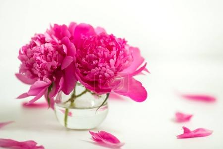 Transparent vase with pink peonies on a white background